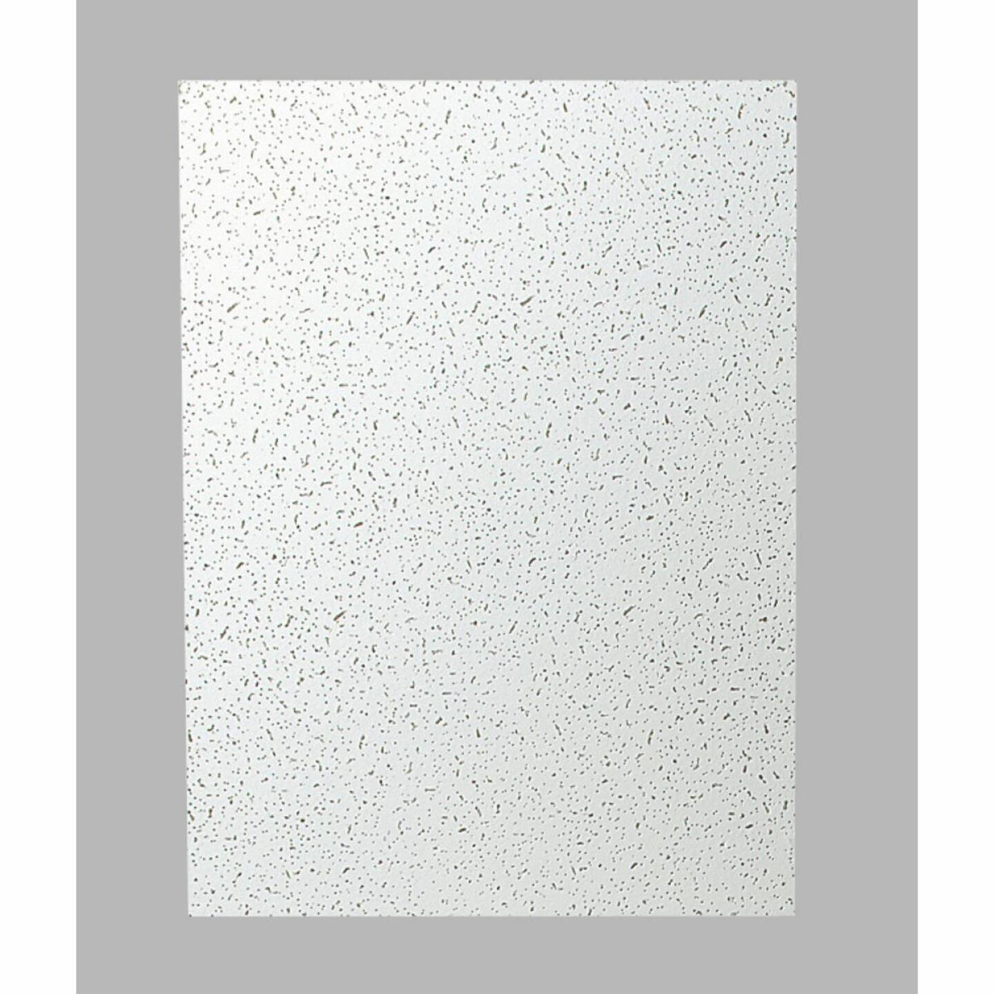 Plateau 2 Ft. x 4 Ft. White Mineral Fiber Ceiling Tile (8-Count) Image 2